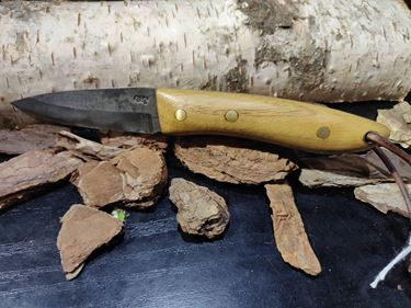 Picture of GECKO Custom Knife, Medium with Chestnut Wood Handle