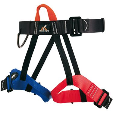 Picture of CAMP - GROUP 2 HARNESS