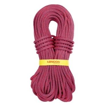 Picture of TENDON AMBITION 10.5 STANDARD ROPE 50M R