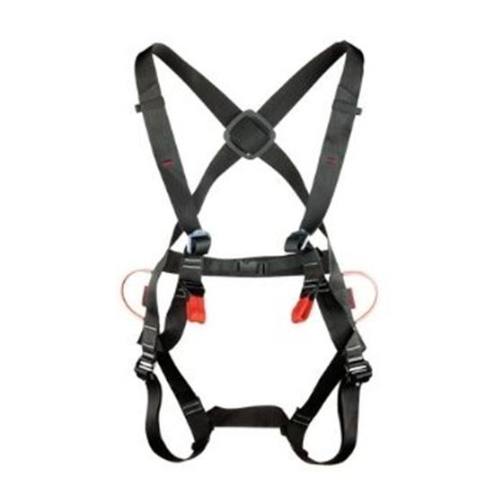 Picture of TENDON COMP HARNESS