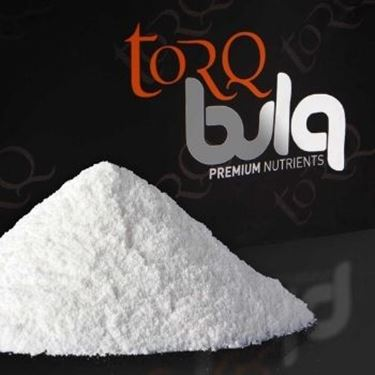 Picture of TORQ - RAW RIBOSE 100G
